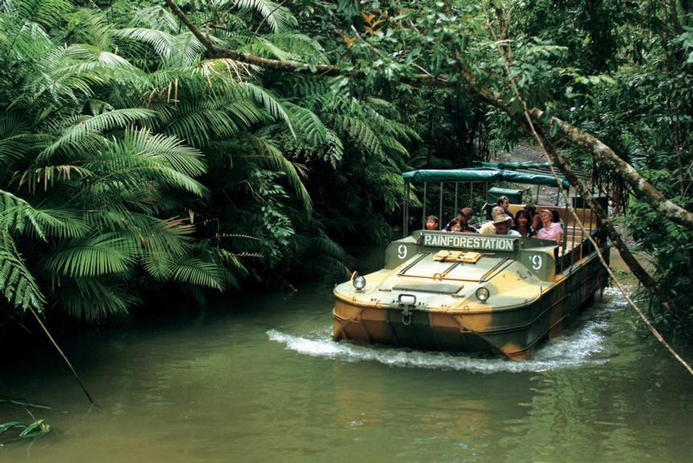 http://www.prasannaholidays.com/wp-content/uploads/2014/06/Cairns-Rainforest.jpg