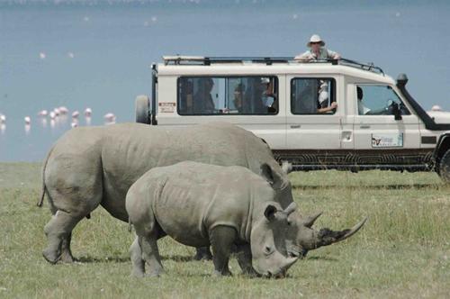 http://www.prasannaholidays.com/wp-content/uploads/2014/06/white_rhino_in_Lake_Nakuru.jpg