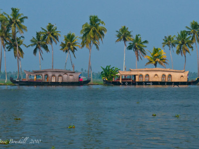 India-Kerala-Alleppey-Backwaters-10-L