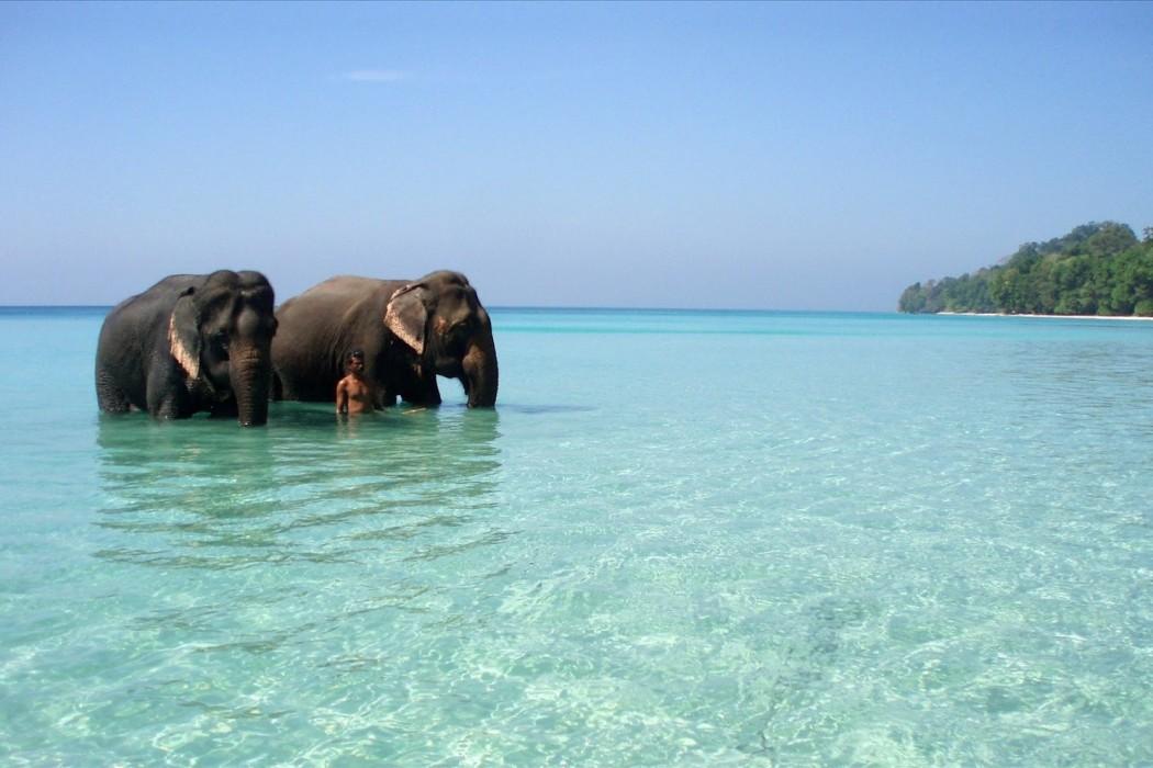 http://www.prasannaholidays.com/wp-content/uploads/2015/10/Andamans-Tour-Package-1050x700.jpg