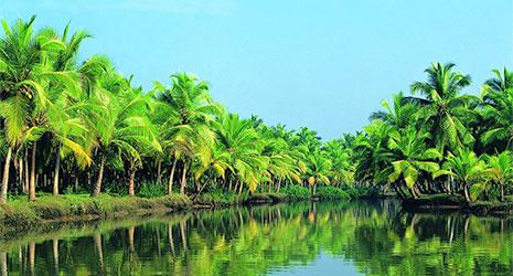 http://www.prasannaholidays.com/wp-content/uploads/2015/10/Kerala.jpg