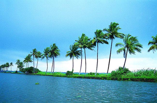 Kerala with Munnar, Thekkady & Kumarakom