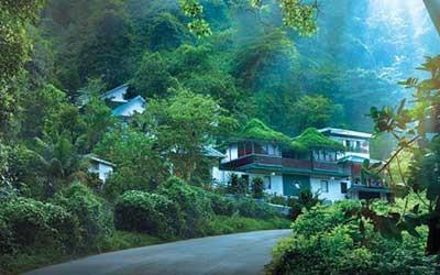 Romantic-Kerala-Munnar