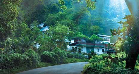 http://www.prasannaholidays.com/wp-content/uploads/2017/10/Romantic-Kerala-Munnar1.jpg
